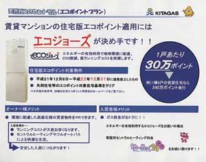 20100805_01_03.jpg
