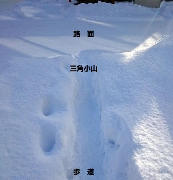 2016_1212yuki.jpg